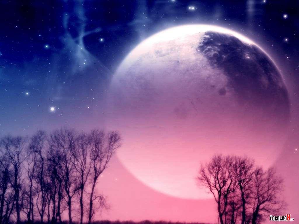 Capítulo 27: Un lobo al llegar la noche | Réquiem Nocturna